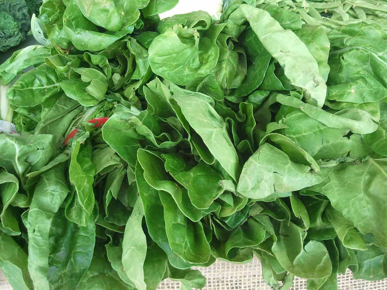 verdures1