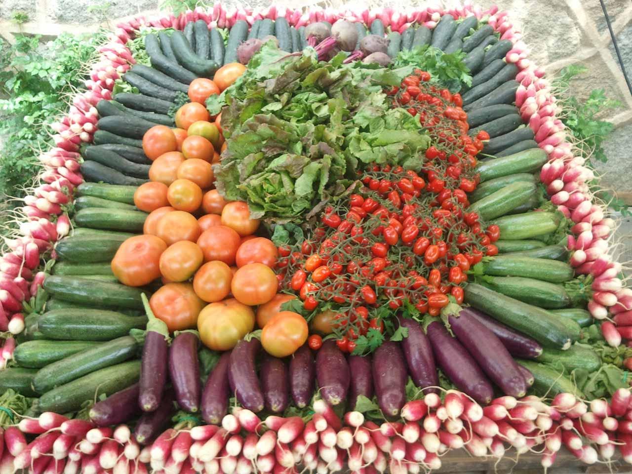 verdures7